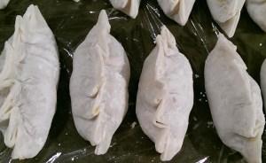 Potstickers- chicken tikka