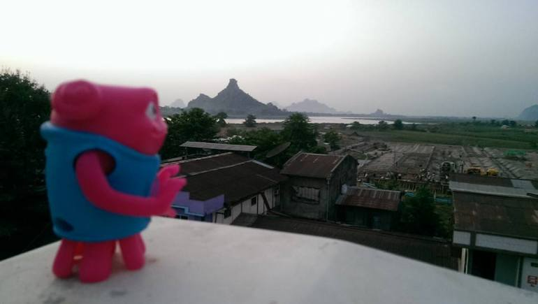 Alien overlooking River and Rice Fields