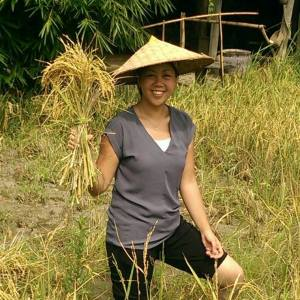 Rice Farming in Laos May 2015