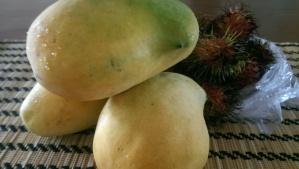 Myanmar Mangoes